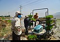 Fars Province 2020 (2).jpg