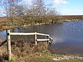 Fence at Broomy Pond, Broomy Plain, New Forest - geograph.org.uk - 335878.jpg