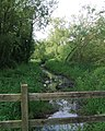 Fenced-off area, Daventry Country Park - geograph.org.uk - 1431666.jpg
