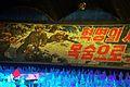 Festival Arirang 0001 01.JPG