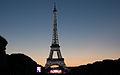 Feu d'artifice du 14 juillet 2014 - Tour Eiffel (10).jpg