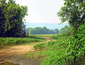 Fields by the Paint Rock River - panoramio.jpg
