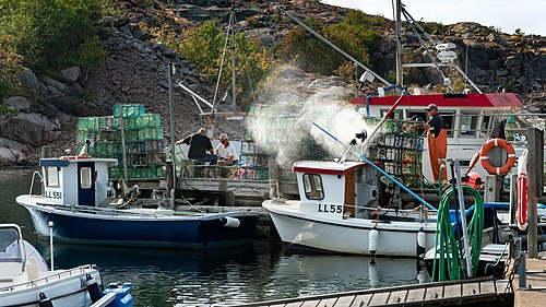 Two fishermen preparing and baiting lobster traps while another is using a pressure washer to clean traps in Norra Grundsund, Lysekil Municipality, Sweden.