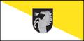Flag of Radviliškis.png