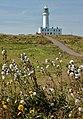 Flamborough Lighthouse img 1896 - panoramio.jpg
