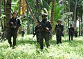 Flickr - Official U.S. Navy Imagery - U.S. Marines and Philippine marines conduct a patrol..jpg