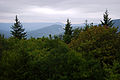 Flickr - ggallice - Williams River valley, from Highland Scenic Highway.jpg