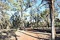 Flinders Ranges SA 5434, Australia - panoramio (109).jpg