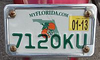 Florida Motorcycle license plate.jpg
