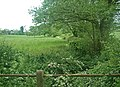 Follow the hedge - follow Ash Brook - geograph.org.uk - 439543.jpg