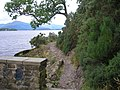 Footpath on the bonnie banks of Loch Lomond - geograph.org.uk - 1404664.jpg
