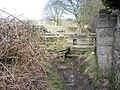 Footpath to Eastby Gate - geograph.org.uk - 433143.jpg