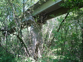 Aérotrain - Photograph of a section of the aérotrain track in the forest of Orléans near Saran, 2006