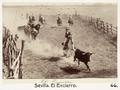 Fotografi av Sevilla. El Encierro - Hallwylska museet - 104812.tif
