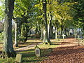 Friedhof Hermannsburg 17.JPG