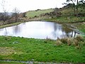 Gaerwen pond - geograph.org.uk - 317076.jpg