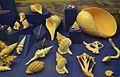 Gastròpodes, col·lecció malacològica, museu paleontològic d'Elx.jpg