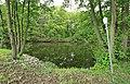 Geschützter Landschaftsbestandteil Schubertgrund in Sachsen. 2H1A1144WI.jpg