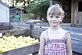 Girl with apples - The Fruit Hunters.jpg