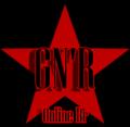 Gnronlinebrasillogo.png