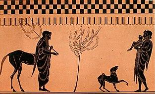 Chiron (Mitologi): Centaur Yang Paling Bijaksana