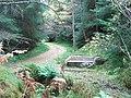 Gormack Burn Stone Seat - geograph.org.uk - 1092133.jpg