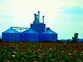 Grain Elevator in Evansville - panoramio.jpg