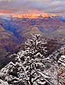 Grand Canyon - panoramio (38).jpg