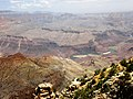 Grand Canyon Colorado River - panoramio.jpg