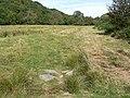 Grassland by River Barle - geograph.org.uk - 53972.jpg