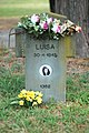 Grave Luisa Ferida Manfrini.jpg