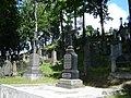 Graves in Vilnius Rasos cemetery 6.jpg