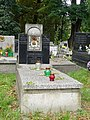 GrobowiecEdmundaRygra-CmentarzRakowicki-POL, Kraków.jpg