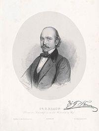 GustavBraunGlinski.jpg