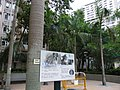 HK Chai Wan Hing Wah (I) Estate tree Royal Palm Sept-2012.JPG