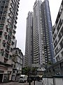 HK SW 上環 Sheung Wan Staunton Street CentreStage PMQ Dawning Height Shing Wong Street February 2020 SS2.jpg
