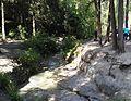 HaShofet-stream-trail-43536.jpg
