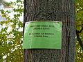 Halensee Seesener Straße Anwohnerprotest.JPG