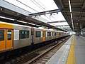Hanshin Line - Dekijima station - train at west platform towards the north seen from east platform.jpg