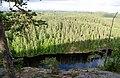 Haukkavuori, Finland - panoramio (2).jpg