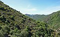Haut-Languedoc- May 2020 a4.jpg