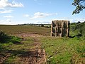 Haystack in a potato field - geograph.org.uk - 991388.jpg