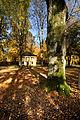 Herbst auf dem Weikersheimer Karlsberg. 03.jpg