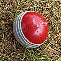 High Beach Cricket Club cricket ball High Beach, Essex, England 1.jpg