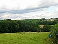 High Weald near Bolney - geograph.org.uk - 226642.jpg