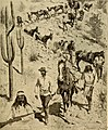 History and government of New Mexico (1921) (14596470808).jpg