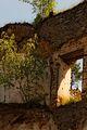 Hohenegg-11052015-13.JPG