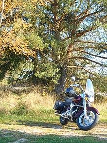Honda Shadow - WikiVisually