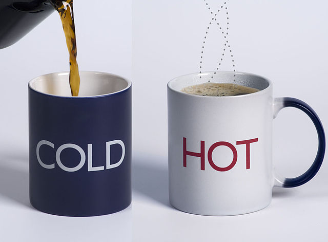 Thermal Cup For Hot And Cold Drinks
