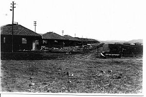 Naharayim - Homes in Tel Or, 1932/1933